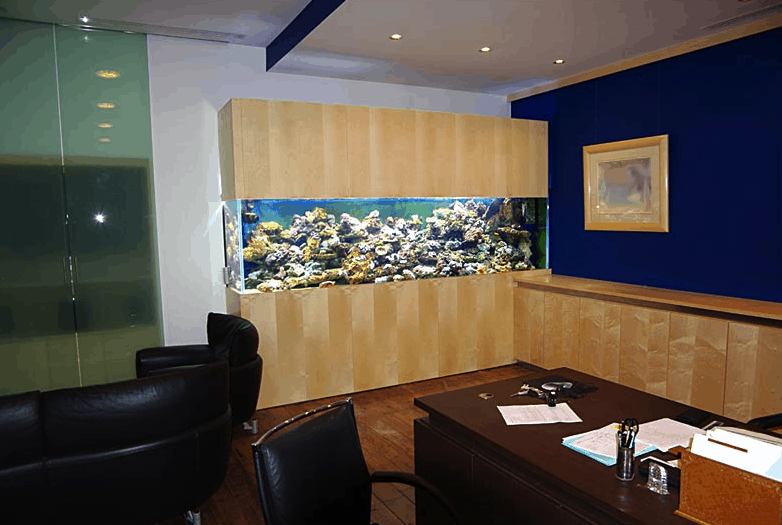 Office Aquariums